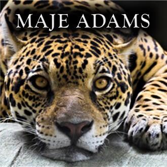 Maje Adams