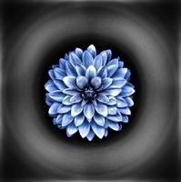 avatar de Karine-72