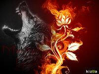 avatar de marilyn21