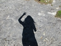 avatar de Cleonomatobel