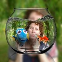 avatar de Desmeri