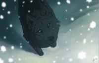 avatar de Roxy427