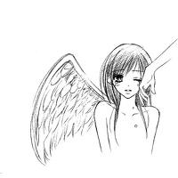 avatar de Fallen27
