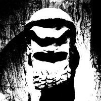 avatar de Theobroma