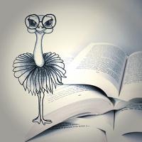 avatar de lecturesduneautruche
