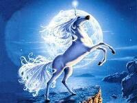 avatar de Luc35