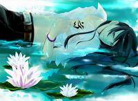 avatar de LilicatAll
