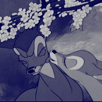 avatar de mlles007