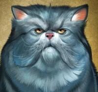 avatar de Fenestra