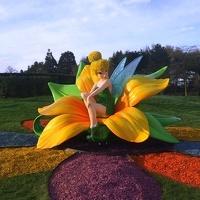 avatar de Rosabella