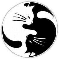 avatar de Serafima