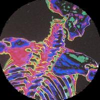 avatar de Soeli