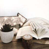 avatar de ironnettebooks