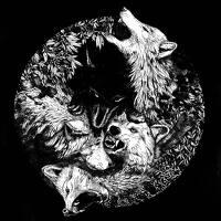 avatar de Vegvisir
