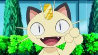 avatar de Miaouss