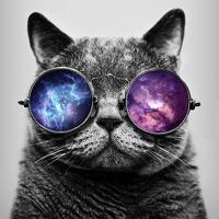 avatar de Baguette2Pain