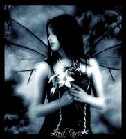 avatar de Lilwen