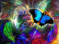 avatar de petitpapillon