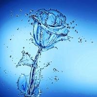 avatar de Tis22