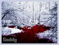 avatar de Saddy