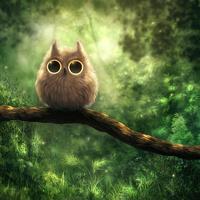 avatar de JuneW