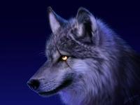 avatar de beubleuch
