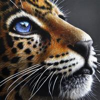 avatar de atalyana