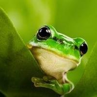 avatar de MaitePoppins
