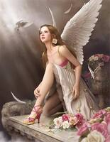 avatar de la.puce.lili