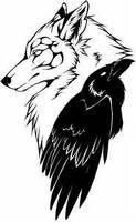 avatar de sandy-wolfcrow