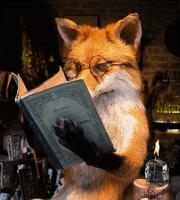 avatar de tochiro