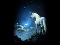 avatar de Domi37