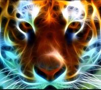 avatar de Deuscorpusdu-77