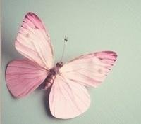 avatar de papillone59