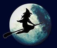 avatar de Sabrina70