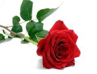 avatar de chacha95
