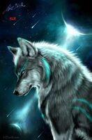 avatar de DreamLife