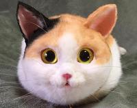 avatar de Dominiquel