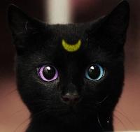 avatar de Isa-Serena