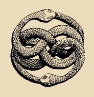 avatar de Tyroph
