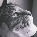 avatar de Aodrene