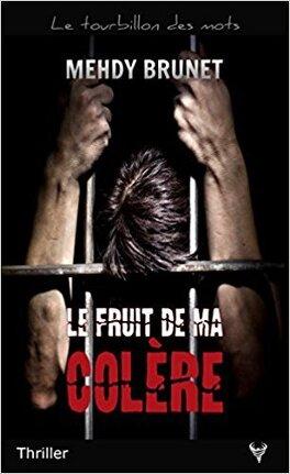 Couverture du livre : Le Fruit de ma colère
