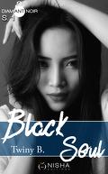 Black Soul, Saison 1