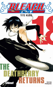 Bleach, Tome 18 : The Deathberry Returns