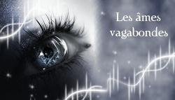 Les âmes vagabondes, Tome 2 : The Seeker