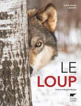 Couverture du livre : Le Loup