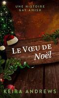 Gay Amish Romance, Tome 3.5 : Le Vœu de Noël