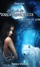 Le Cycle des pierres protectrices, Tome 1 : Pierre de Lune