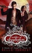 Une nuance de vampire, tome 19 : A soldier of shadows