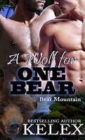 Bear Mountain, Tome 15 : A Wolf for One Bear